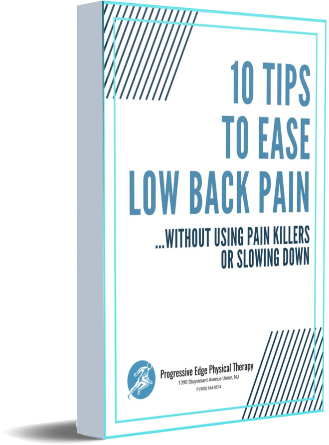 Low Back Pain Guide Physical Therapy